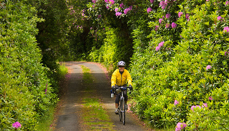 Birq-ireland-biking
